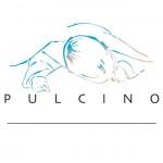 Logo-pulcino